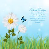 March 8th Realistic Background. Realistic background to march 8th holiday with floral design and text field vector illustration Royalty Free Stock Image