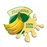 Realistic banana. Berry label with juice splash. Vector illustration  on white background. 100% natural organic fruit Stock Images