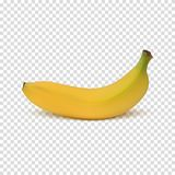 Realistic banana icon Στοκ Φωτογραφία