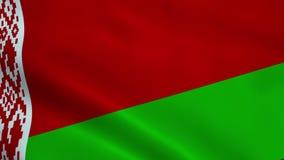 Realistic Belarus flag. Waving in the wind. Seamless looping stock video footage