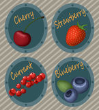 Realistic berry labels Stock Photos