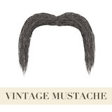 Realistic Black vintage drooping mustache Royalty Free Stock Images