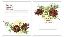 Realistic Botanical ink sketch of colorful fir tree branches with pine cone isolated on white background. Good idea for royalty free illustration