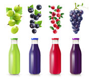 Realistic Bottles With Berry Juice Set Royalty Free Stock Photos