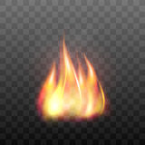 Realistic bright blazing campfire effect. Stock Images