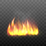 Realistic bright blazing campfire effect. Royalty Free Stock Image
