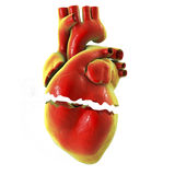 Realistic broken heart, separation and divorce concept Stock Photos