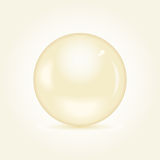 Realistic Brown Pearl royalty free illustration