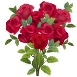 Realistic bunch of red roses. On white Royalty Free Stock Photos