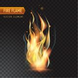 Realistic burning fire flame, vector effect with transparency. Realistic burning fire flame, with transparency. Vector illustration Royalty Free Stock Photos