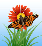 Realistic butterfly on flower Royalty Free Stock Photo