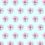 Realistic chinese pink sakura pattern on soft blue sky background. Oriental textile design template flower blossom. Spring background. 3D nature backdrop vector vector illustration