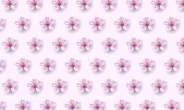 Realistic chinese pink sakura pattern on soft rose background. Oriental textile design template flower blossom spring. Background. 3D nature backdrop vector vector illustration