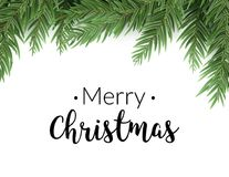 Realistic christmas fir background. Merry christmas pine tree decoration border card.  Stock Images