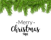 Realistic christmas fir background. Merry christmas pine tree decoration border card.  Royalty Free Stock Photo