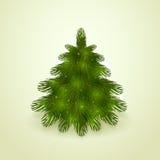Realistic Christmas tree Stock Photos