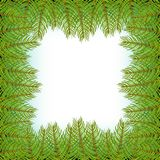Realistic christmas tree fir branch frame for decorate Vector illustration. Stock Image