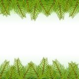 Realistic christmas tree fir branch frame for decorate Vector illustration. Royalty Free Stock Photos