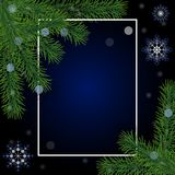 Realistic Christmas tree pine branches, frame and snowflakes on Royalty Free Stock Image