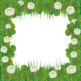 Realistic clover frame for St. Patrick's Day Royalty Free Stock Photo