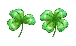 Realistic clover leaves. Vector shamrock icons, isolated on white background Stock Photo