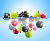 Realistic Colorful Berries Background Stock Photo