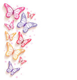 Realistic Colorful Butterflies Isolated for Spring Stock Image