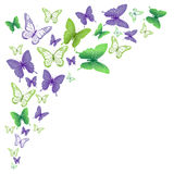 Realistic Colorful Butterflies Isolated for Spring Royalty Free Stock Image