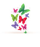 Realistic Colorful Butterflies Isolated for Spring Stock Photos