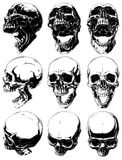 Realistic cool detailed graphic skulls vector set. Vector set of 9 realistic cool detailed graphic black and white human skulls in different projections with Stock Photos