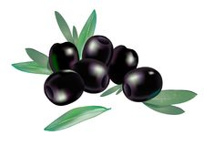 Realistic 3d boneless black olives with few leaves composition isolated on white. Background. Vector organic food  illustration Royalty Free Stock Images
