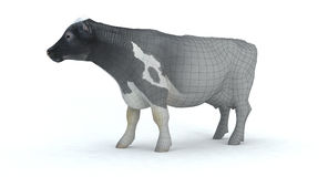 Realistic 3d cow Stock Photography