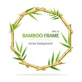 Realistic 3d Detailed Bamboo Shoots Circle Frame. Vector. Realistic 3d Detailed Oriental Plant Bamboo Shoots Circle Frame for Promotion, Marketing and vector illustration