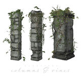 Vines growing on old columns. Realistic 3d illustration of green vines growing on old stone columns, white background stock illustration