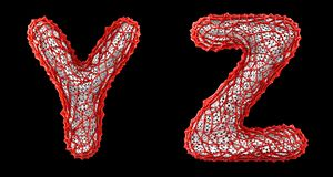 Realistic 3D letters set Y, Z made of red plastic. stock photography