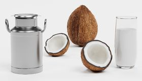 3D Render of Coconut Milk. Realistic 3D Render of Coconut Milk Royalty Free Stock Photos