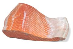 3D Render of Salmon Fillet. Realistic 3D Render of Salmon Fillet Stock Photography