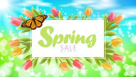 Realistic 3d spring sale script lettering web banner template. Color tulip flowers butterfly grass blue sky blue. Background flyer frame promotional square Stock Photo