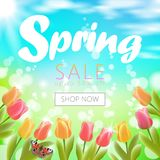 Realistic 3d spring sale script lettering web banner template. Color tulip flowers butterfly grass blue sky blue. Background shop now promotional square social Royalty Free Stock Image