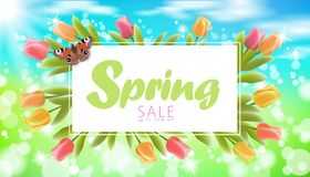 Realistic 3d spring sale script lettering web banner template. Color tulip flowers butterfly grass blue sky blue. Background flyer frame promotional square Royalty Free Stock Image