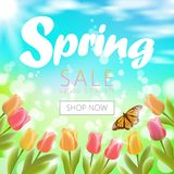 Realistic 3d spring sale script lettering web banner template. Color tulip flowers butterfly grass blue sky blue. Background shop now promotional square social Stock Images