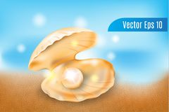 Realistic 3d vector pearls in the shells on beach background royalty free illustration