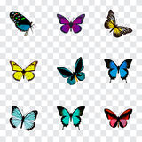 Realistic Demophoon, Copper, Purple Monarch And Other Vector Elements. Set Of Beauty Realistic Symbols Also Includes vector illustration
