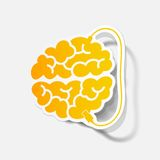 Realistic design element: brain-usb, plug Stock Photos
