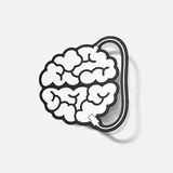 Realistic design element: brain-usb, plug Royalty Free Stock Photo