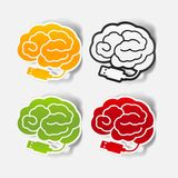 Realistic design element: brain-usb, plug Stock Images