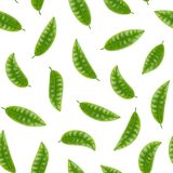 Realistic Detailed 3d Elements Set of Tea Seamless Pattern Background. Vector vector illustration