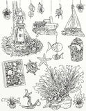 Realistic drawings of the marine object and fishermen With an even starfish starfish, shells and compass Royalty Free Stock Images