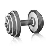 Realistic dumbbell Stock Image