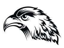 Realistic eagle head Stock Images